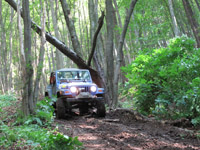 transilvania-adventure-trophy-081-thumb.jpg